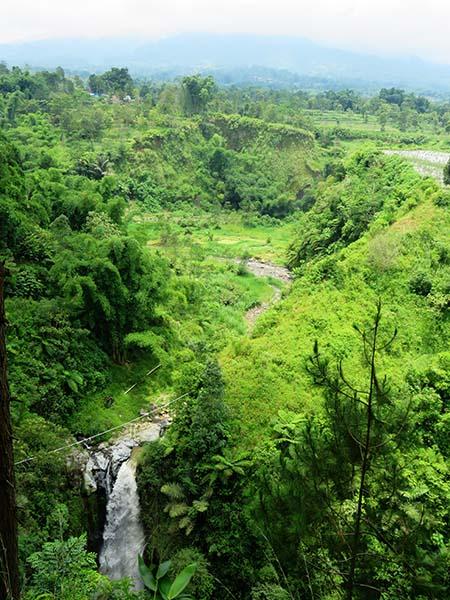 Aliran Sungai Sumber Air Terjun Kedung Kayang