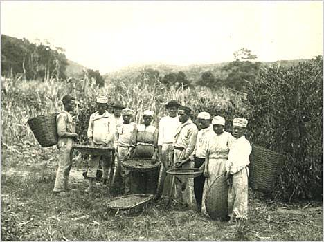 História do Brasil Império Resumo Completo
