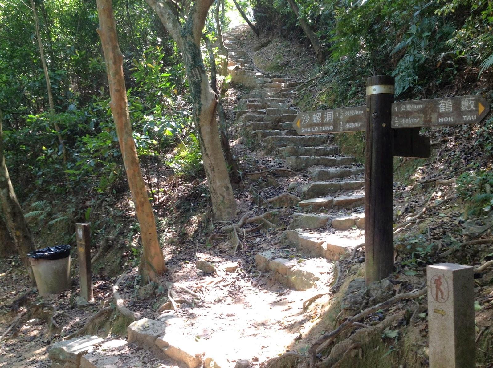 HK Hiking @旅遊樂悠悠.com: WT9_衛奕信徑第九段:九龍坑山 ,鶴藪水塘,八仙嶺郊野公園 ,仙姑峰