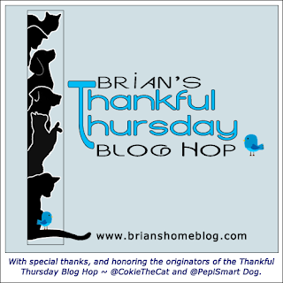Brian's Thankful Thursday blog hop badge.