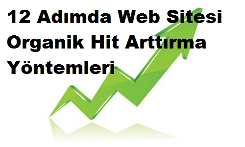 12 Adımda Web Sitesi Organik Hit Arttırma Yöntemleri