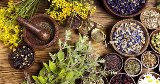 أعشاب تستعمل ضد أنواع الإصابات الفطرية