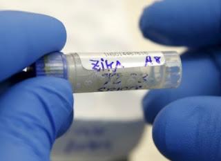 Saiba o que é falso e o que é verdadeiro nos boatos sobre zika