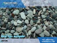batu sikat hijau multycolor