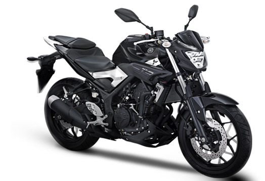 Yamaha MT-25 Streetnaked Revealed : Review and Price