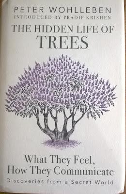 Peter Wohlleben, trees, book