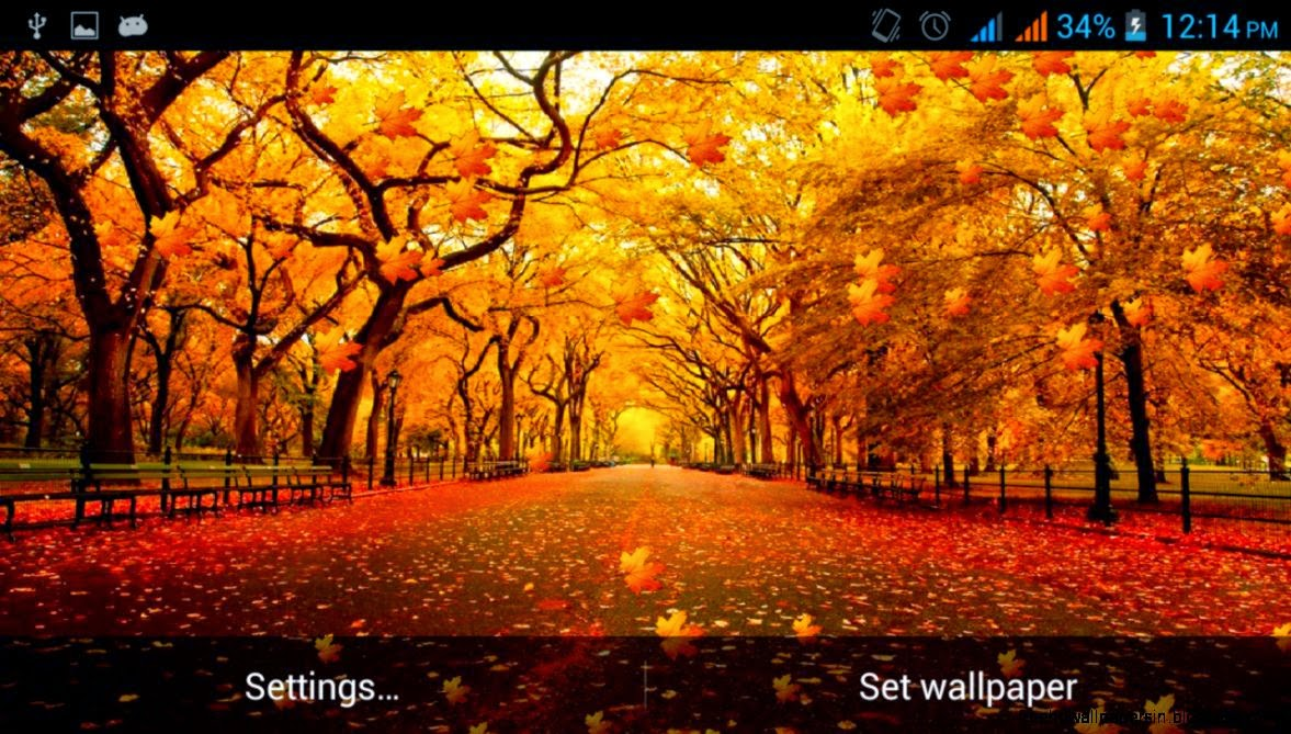 Fall Themed Backgrounds | Free HD Wallpapers
