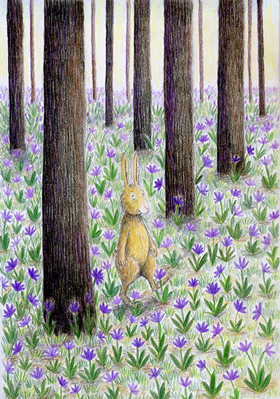into the woods illustration yara dutra