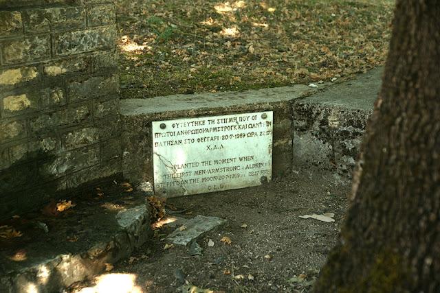 Πλάτανος σε χωριό της Θεσπρωτίας φυτεύτηκε την ημέρα και την ώρα, που οι πρώτοι άνθρωποι, πάτησαν στη σελήνη