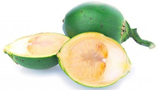 khasiat buah pinang