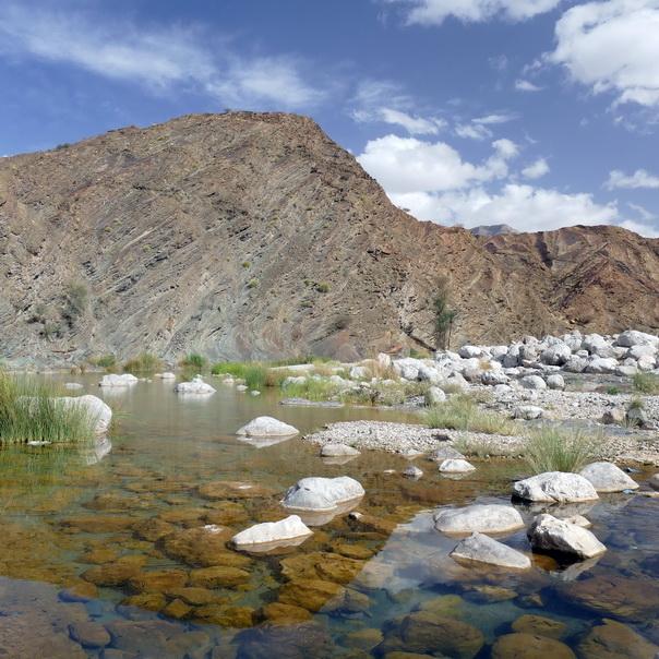 Wadi, Bergtal, Oase, Oman, Wasser, Bach, See