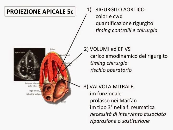 uretrite sintomi nelle donnelly