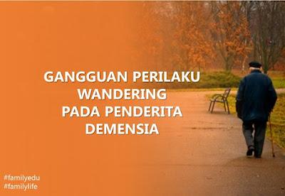 perilaku wandering pada penderita demensia