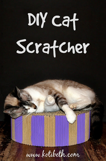 diy cat scratcher or bed