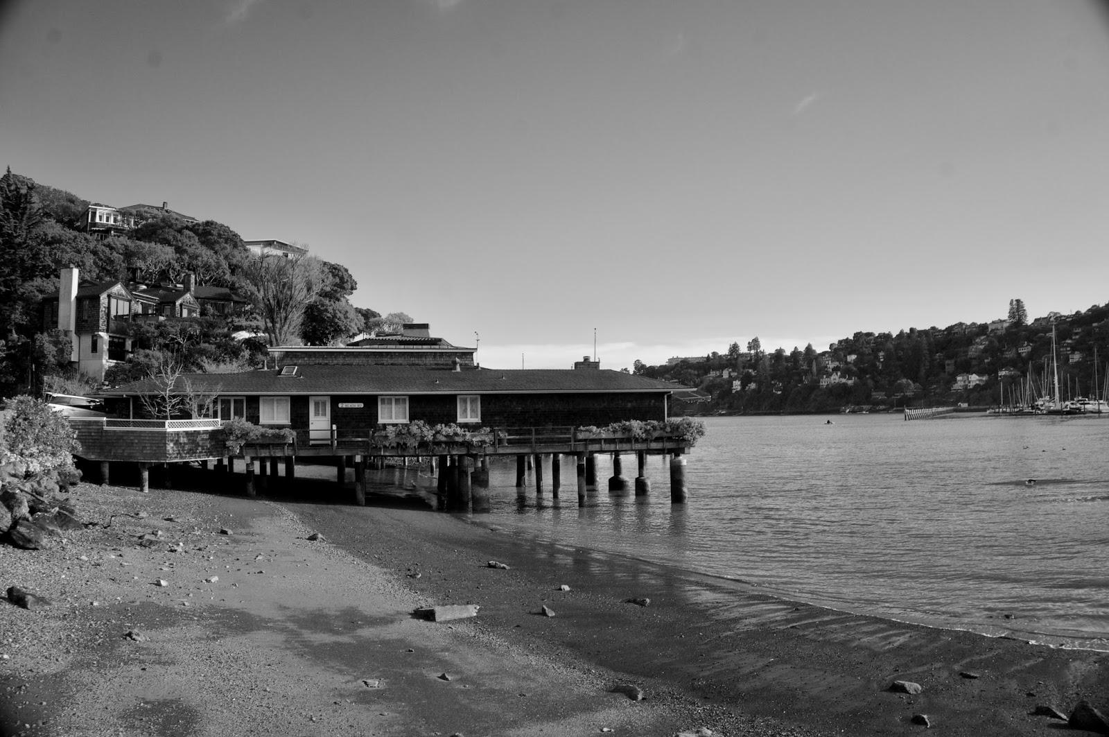 Tiburon Marina