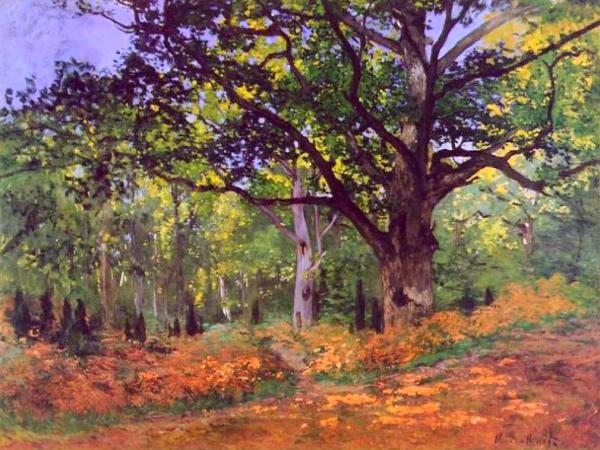 El roure de Bodmer, bosc de Fontainebleau (Oscar-Claude Monet)