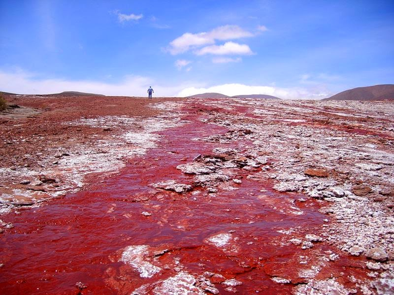The Red Lagoon Camina, Chile