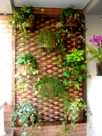 Mundo de Cissa: Plantas na vertical