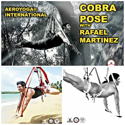 yoga aereo, aeroyoga, air yoga, aerial yoga, yoga, pilates, fitness, aeropilates, pilates aereo, cursos, rafael martinez, teacher training, formacion, salud, wellness