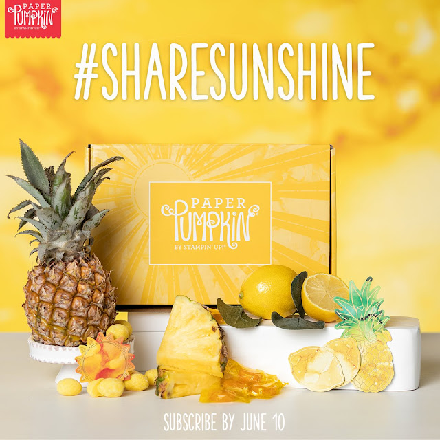 Paper Pumpkin June Box Of Sunshine monthly subscription stamp kit | Stampin' Up! | Subscribe with Nicole Steele The Joyful Stamper