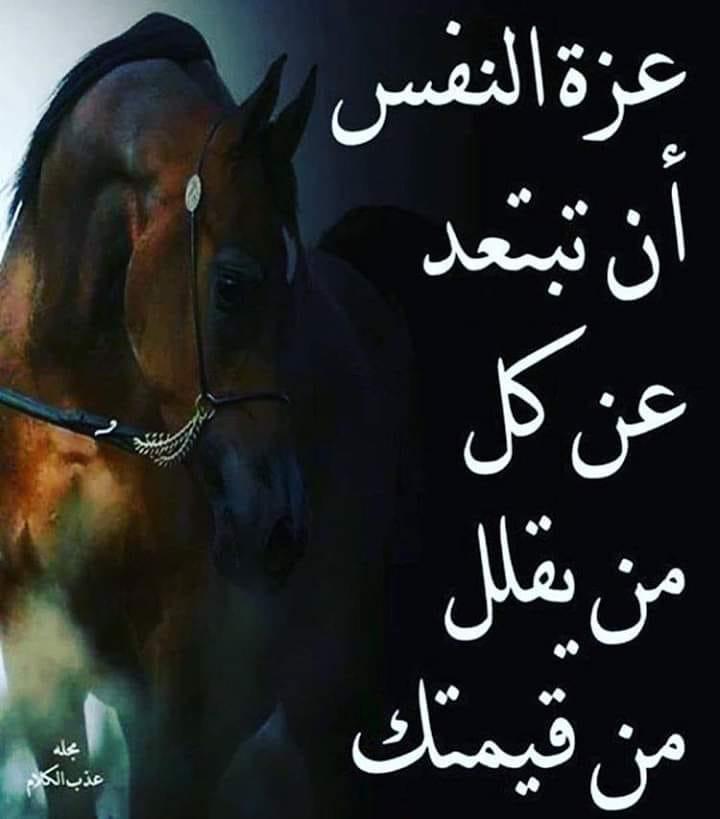 Kata Mutiara Bahasa Arab Tentang Kehidupan Dan Artinya Nikah Atau S2