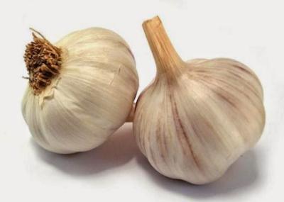 bawang merah untuk mengobati panu yang membandel