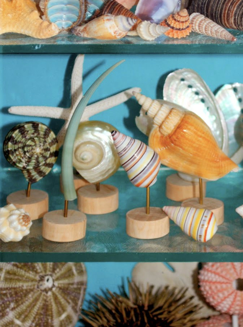 Seashell Wood Display Pedestals