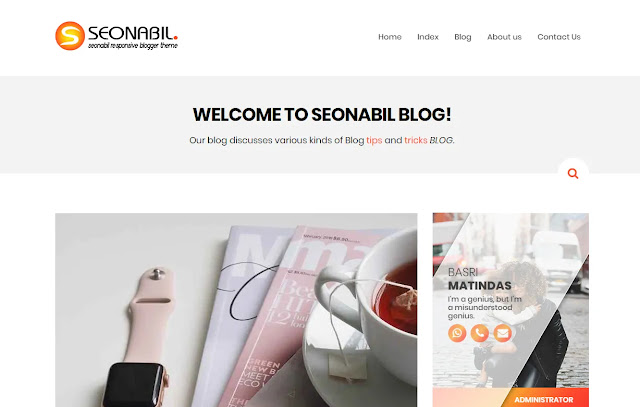 Seonabil Responsive Personal Clean Minimalist Blog Blogger Template Theme