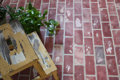 painted brick pattern on concrete floor with plant