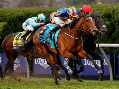 Newcastle, horse racing, racing tips,