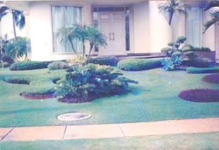Galeri Taman - Tukang Taman Surabaya 23
