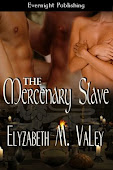The Mercenary Slave (Book 2 of The Mercenary Tales)