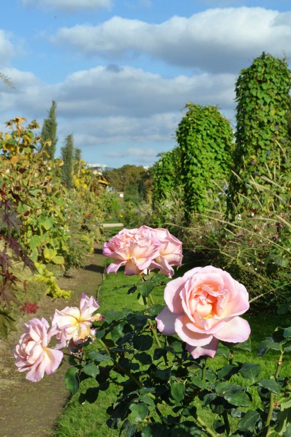 Art et glam l 39 automne s 39 invite au jardin des plantes for Au jardin des plantes poem