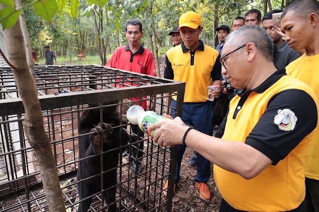 Ket Foto: BERIKAN NUTRISI- Sekdaprov Kalsel H Abdul Haris disaksikan masyarakat pecinta keragaman satwa dan lingkungan memberikan nutrisi berupa minuman susu kepada salah satu beruang madu, di Tahura Sultan Adam, Jumat (8/9).