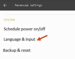 select-language-input-option