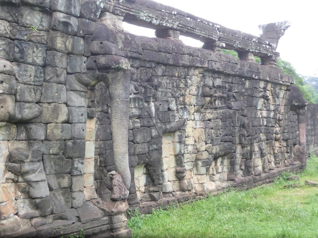 ELEPHANTS TERRACE