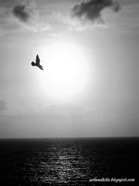 Às vezes, a integridade... é um percurso muito solitário... / Sometimes, integrity... it is a very lonely journey...