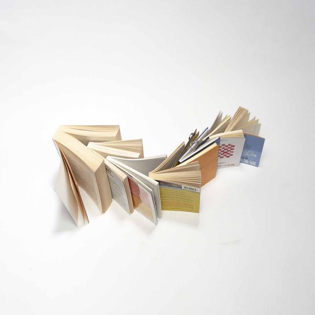 Contoh Tugas Resensi Buku