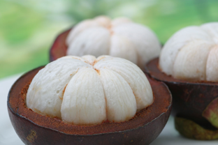 7 Manfaat buah manggis untuk kesehatan tubuh