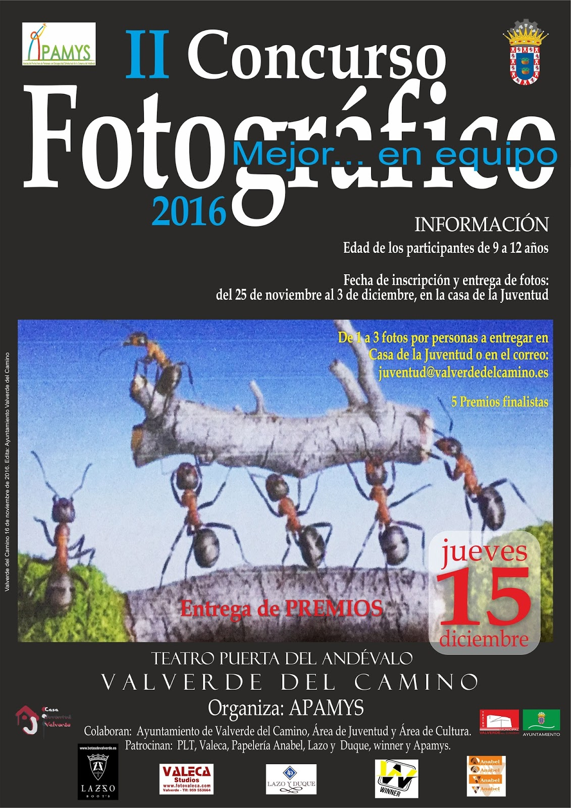 II Concurso Fotográfico de Apamys