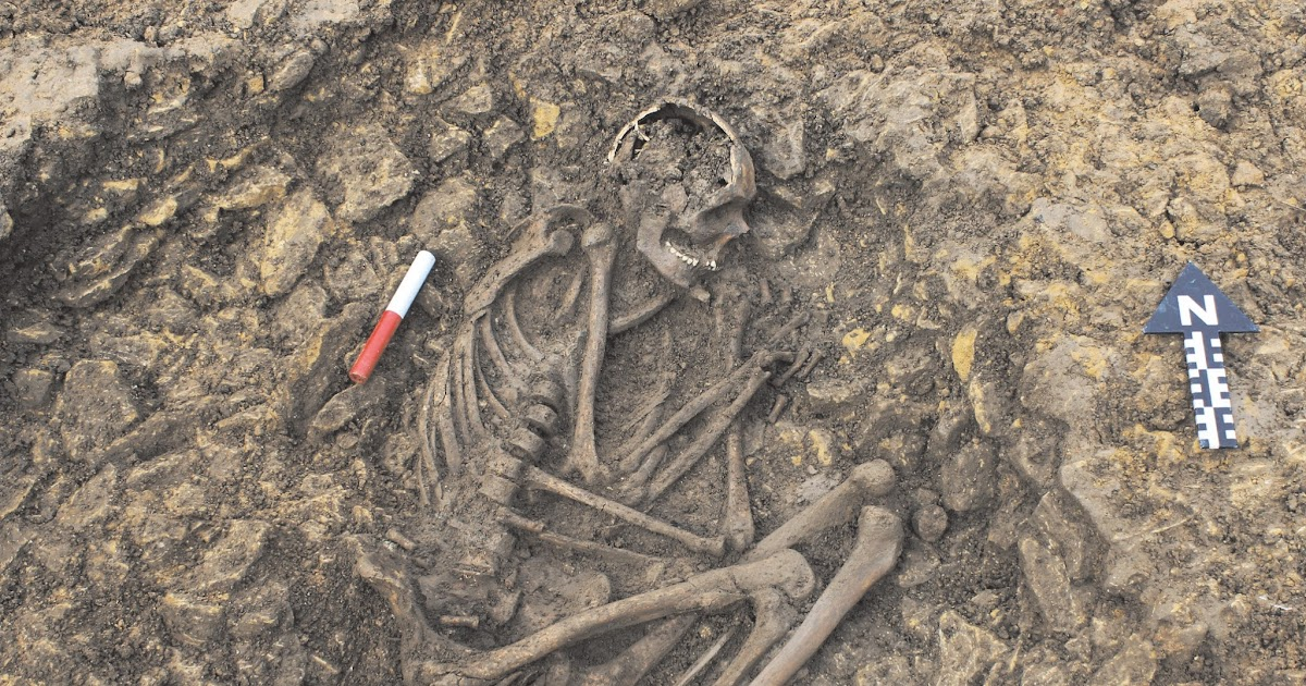 Urban archaeology iron age burial and medieval farming for Define terrace farming