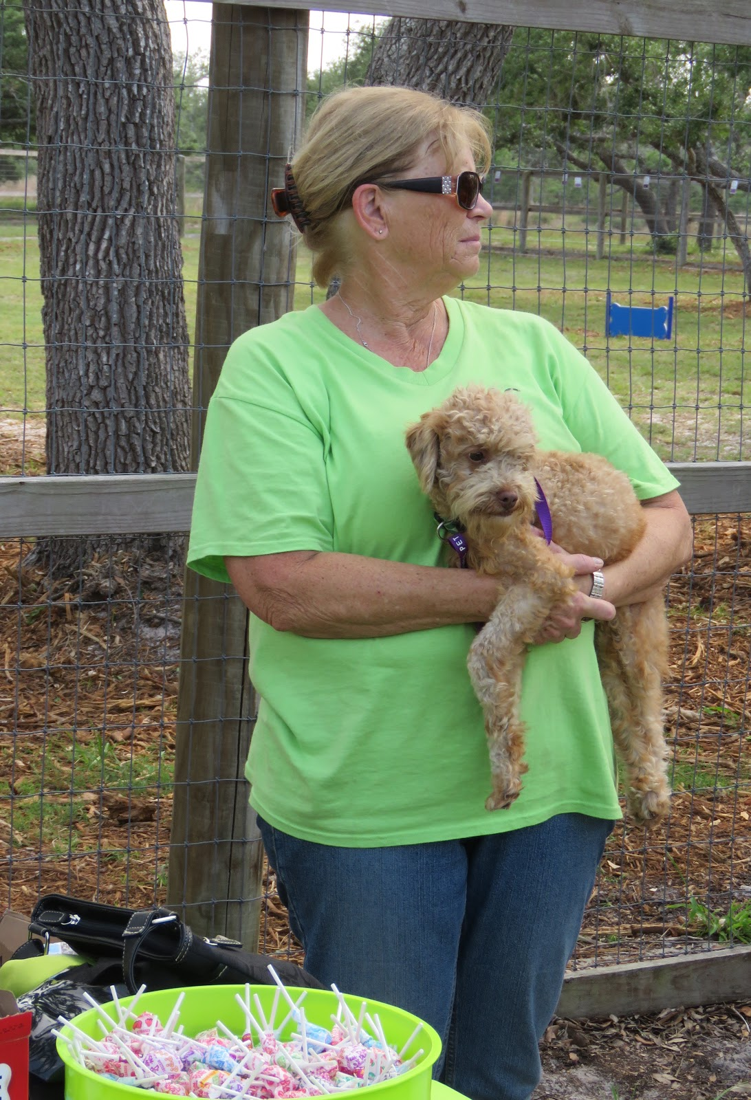 Roving Reporter A Happy Day For The Dogs Memorial Dog Park Re