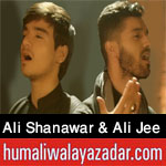 http://humaliwalayazadarcom.blogspot.com/2017/09/ali-shanawar-ali-jee-nohay-2018.html