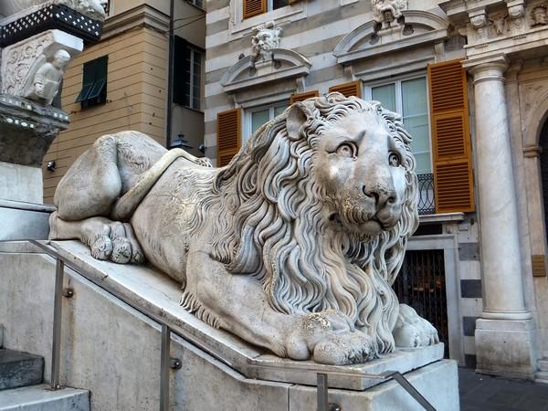 gênes genova dôme cathédrale san lorenzo vieille ville lion escalier