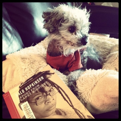 A fuzzy grey poodle, Murchie, lays on a sheep-shaped pillow. He wears an orange t-shirt with brown trim. In front of him is a small, slender paperback copy of Report From Planet Midnight with its author, Nalo Hopkinson, on the cover. Hopkinson is a black woman with her bangs twisted and two long longs on the left side of her head. She wears glasses.