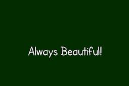 Always Beautiful! - Opini