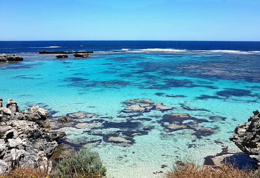 Day Trip To Rottnest Island Lux Life London