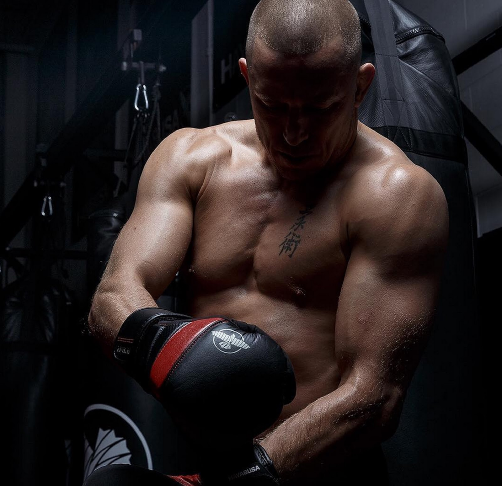 GEORGES ST PIERRE 2