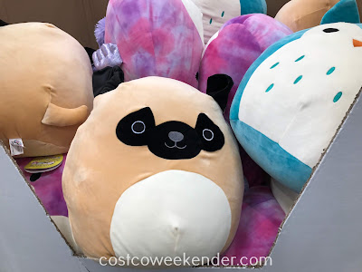 Give your child something to hug with the Squishmallows Plush