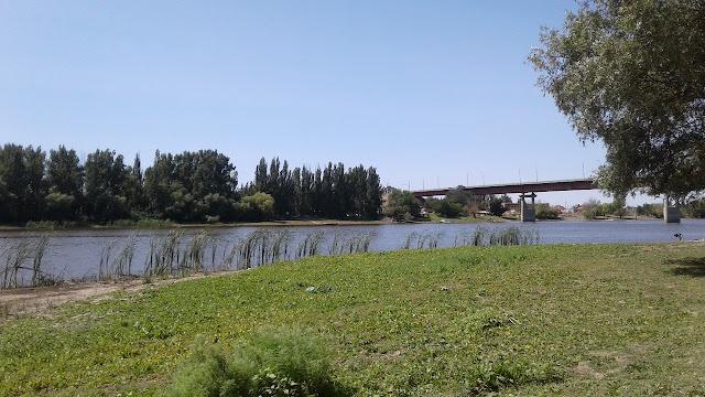 Берег реки Болда у села Началово